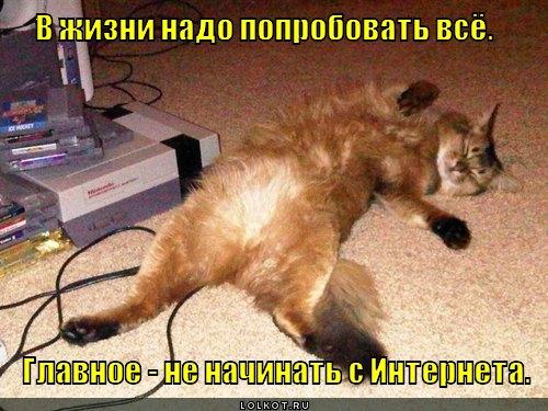 nado-poprobovat-vsyo_1335762855.jpg
