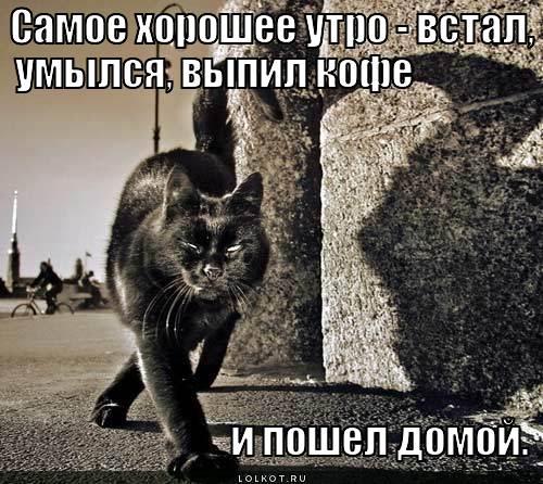 samoye-horosheye-utro_1335762376.jpg
