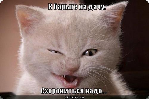 shoronitsya-nado_1334288833.jpg