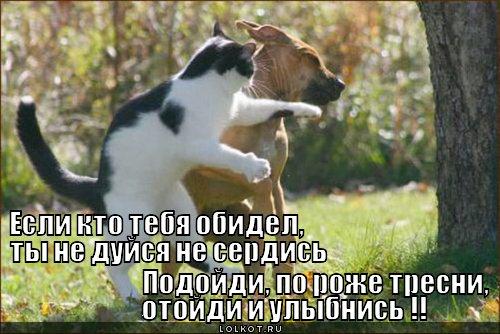 yesli-kto-obidel_1333341425.jpg