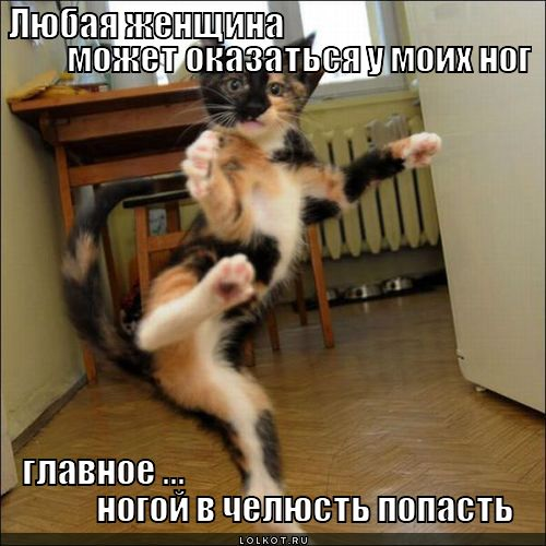 lyubaya-zhenschina_1338810908.jpg