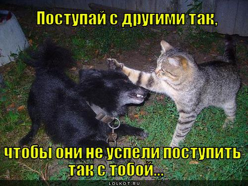 postupay-s-drugimi-tak_1340732248.jpg