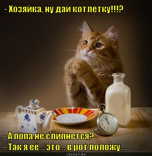 day-kotletku_1342901478.jpg