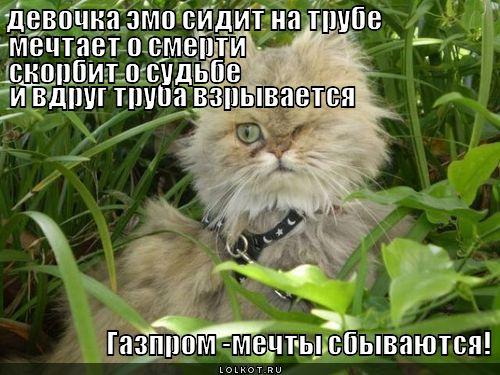 gazprom-mechty-sbyvayutsya_1342092176.jp