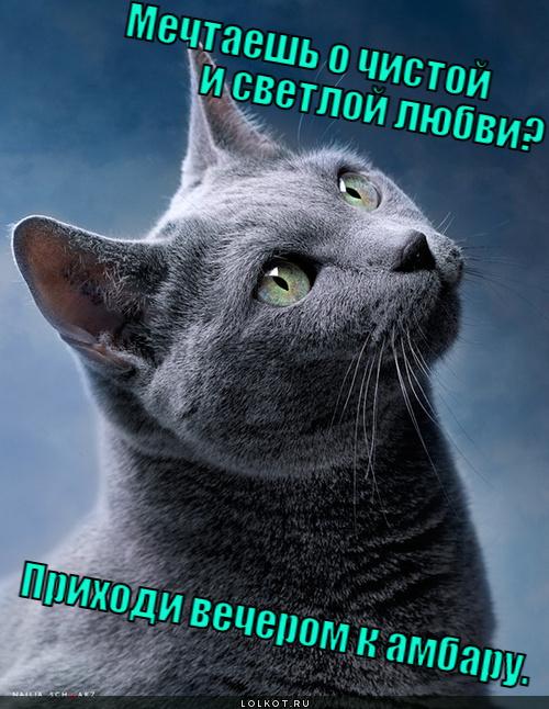 mechtayesh-o-chistoy-i-svetloy-lyubvi-pr