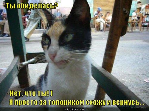 obida_1342692571.jpg