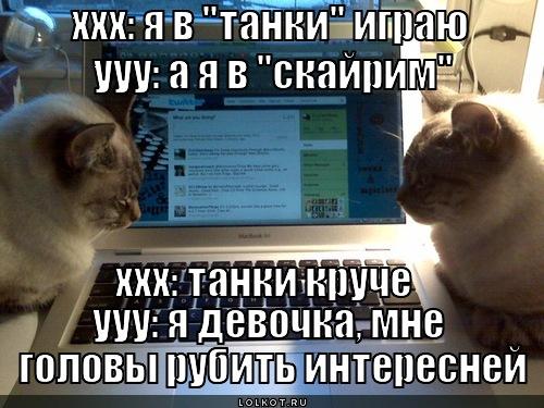 http://lolkot.ru/wp-content/uploads/2012/07/skayrim_1343710337.jpg