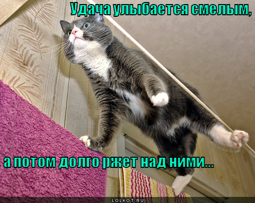 udacha-ulybayetsya-smelym_1341704569.jpg