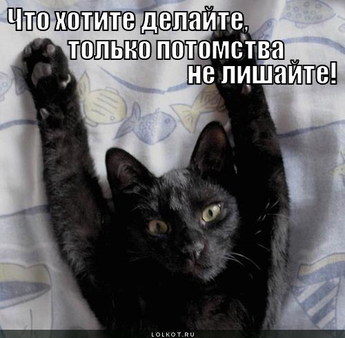 chto-ugodno-..._1345732448.jpg
