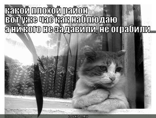 plohoy-rayon_1344964007.jpg