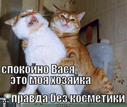 spokoyno-vasya_1344977050.jpg