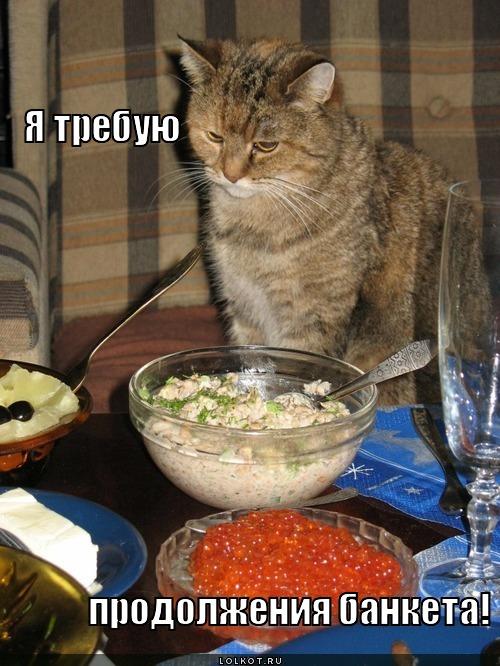 http://lolkot.ru/wp-content/uploads/2012/08/ya-trebuyu-prodolzheniya-banketa_1344250860.jpg