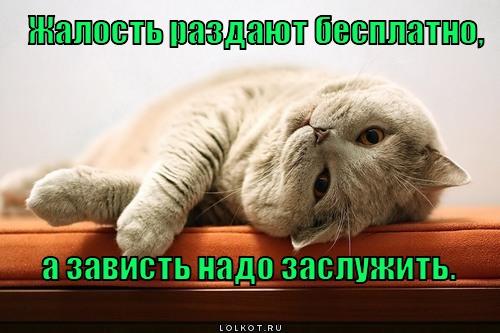zhalost-vs-zavist_1344432415.jpg