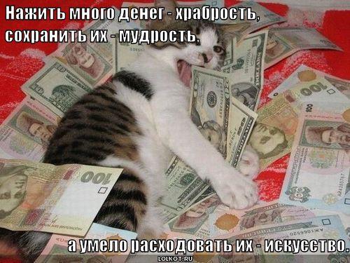 много денег | Лолкот.Ру