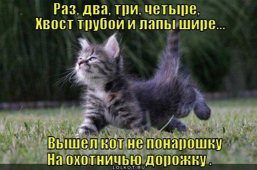 na-ohotu_1350040250.jpg