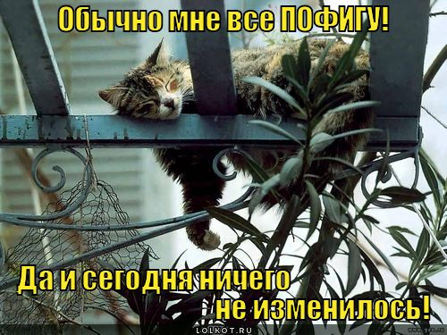 pofigist_1350020070.jpg