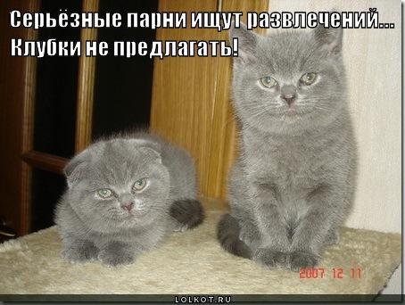 seryoznyye-parni_1349762680.jpg