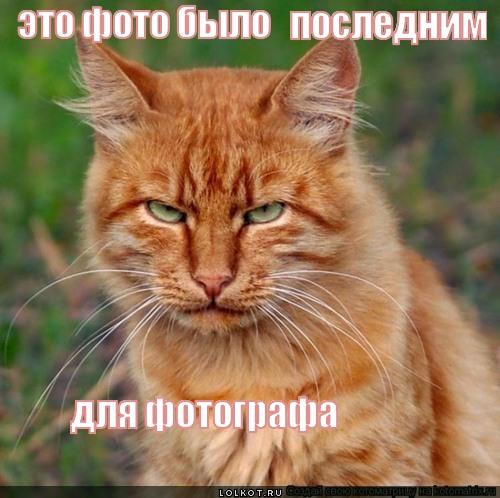 posledneye-foto_1353254761.jpg