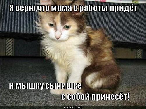 ya-veryu_1353945507.jpg