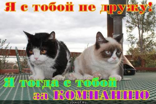 """Мартыненко о Порошенко: """"Я с ним не ссорился, но и не дружу"""" - Цензор.НЕТ 269"""