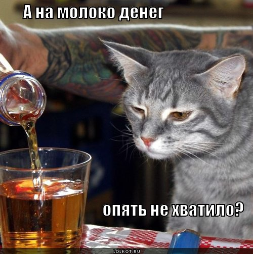 ne-hvatilo_1356244130.jpg