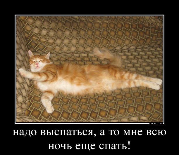 Ну ты и соня картинка