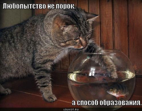 sposob-obrazovaniya_1359988475.jpg