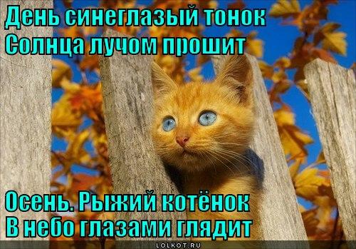 den-sineglazyy_1364066339.jpg