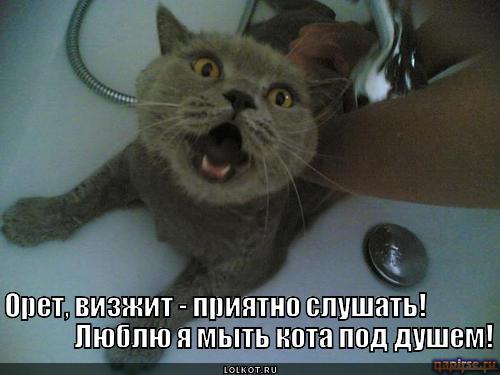 игры мыться в душе