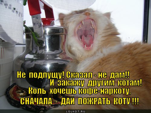 shantazh_1363026285.jpg