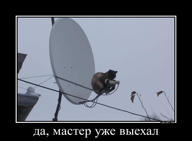 tehpodderzhka-na-svyazi_1363084035.jpg