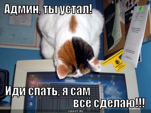 https://lolkot.ru/wp-content/uploads/2013/03/utro-vechera-mudreneye._1362321956.jpg