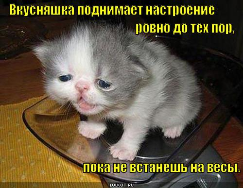 vkusnyashka-_1363767671.jpg
