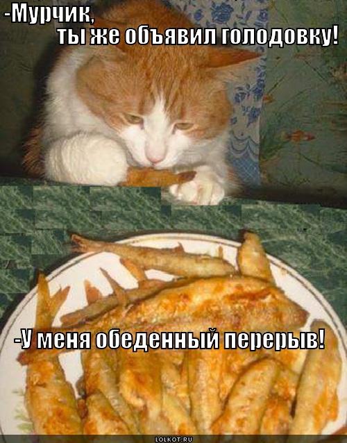 voyna-voynoy-a-obed-po-raspisaniyu_13641
