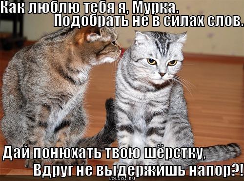 как любил тебя я: