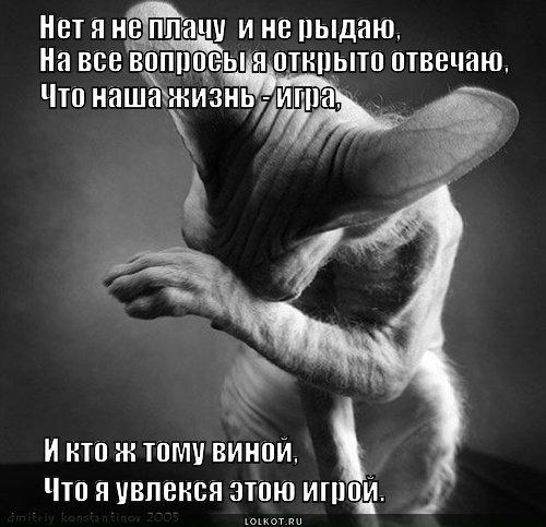 За ролик пока что никто не голосовал рыдаюдорогаяmov