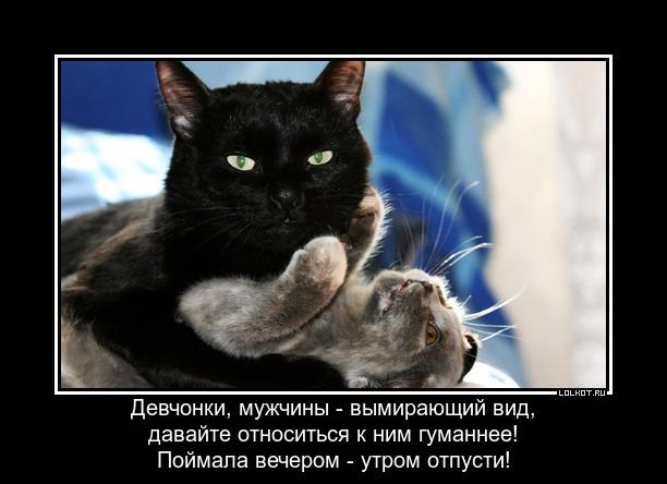 ne-gubite-muzhykov-ne-gubite._1365772679