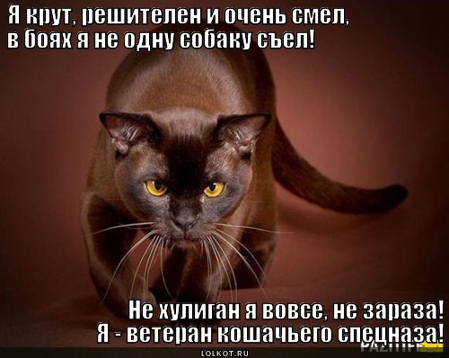 ne-zaraza-iz-spetsnaza._1366030434.jpg