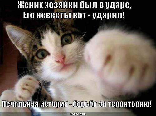 pechalka_1367209232.jpg