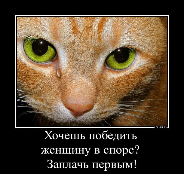 pobeda-lyuboy-tsenoy_1366344888.jpg