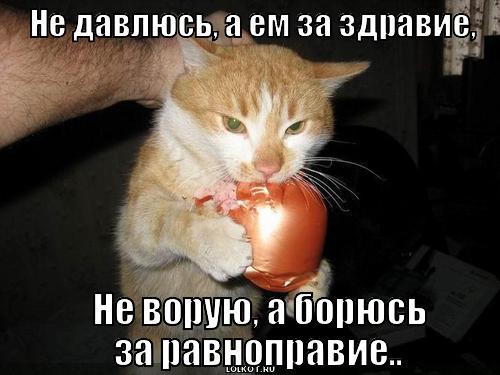 za-ravnopraviye_1366657829.jpg