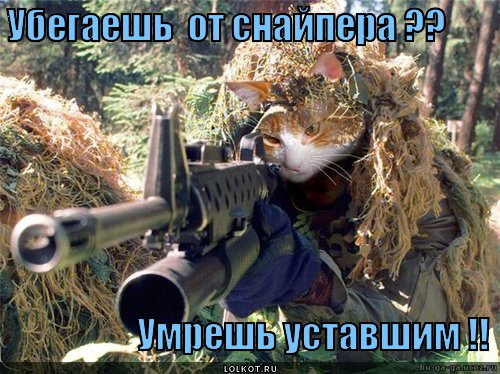 zrya_1366225460.jpg