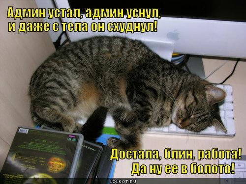 a-tut-yego-podruzhki-piyavki-da-lyagushk