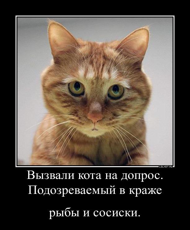 """""""Это плохой знак"""", - Ульянченко о том, что попала в список разыскиваемых экс-чиновников - Цензор.НЕТ 9756"""