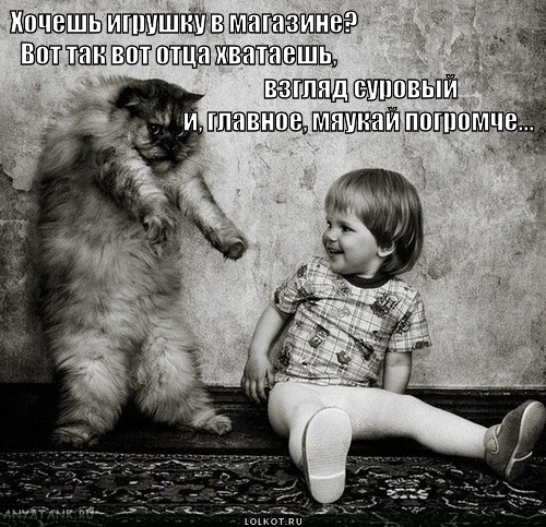 hochesh-igrushku_1369764144.jpg