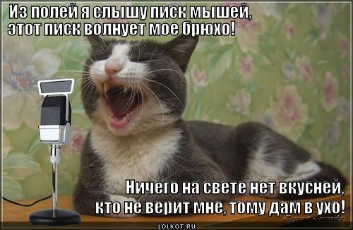 iz-poley-donositsya-naley_1368535094.jpg