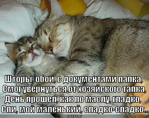 missiya-vypolnena_1368556753.jpg