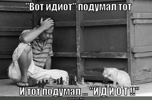 ne-nu-idiot-zhe_1369725095.jpg