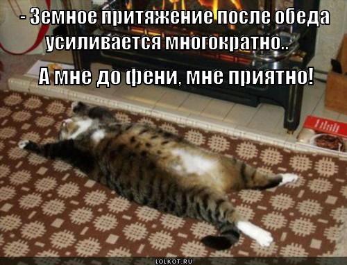 prityazheniye-zemli-fi_1368900359.jpg