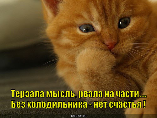 pro-protuhty._1369597497.jpg